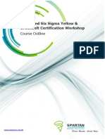 Combined Six Sigma Yellow Greenbelt Certification Workshops1