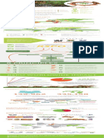 Who is RSPO Tall Infographic PDF- April 2017-English-English