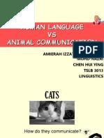 Human Language 1