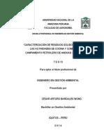 TESIS PARA LIBRO CESAR BARDALES WONG.pdf