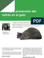 Manejo y prevención del estrés en el gato