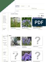 Arbustes à Fleurs Bleu Pour Réaliser Un Jardin Bleu - Hortimarine
