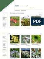 Arbustes Et Plantes de Climat Doux en Bord de Mer - Hortimarine