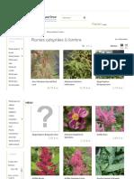 Plantes Adaptées à l'Ombre - Hortimarine