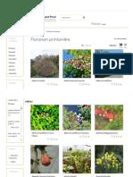 Plantes à floraison printanière - Hortimarine.pdf