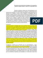 Procesamiento de la información y toma de decisiones estratégicas en las pequeñas y medianas empresas.docx
