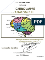 MOELLE EPINIERE ADONIS SERGHINI.pdf