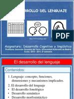 El desarrollo del lenguaje_presentación teoría