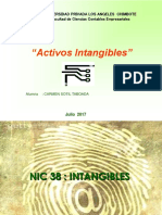 Nic 38 Intangibles