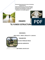 Ensayo Fundo Estructurado