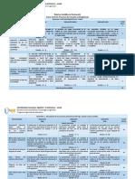Rubrica Analitica Evaluacion 211615 2015-I