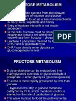 K - 7 Carbohidrate Metabolism 5