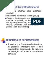 Princípios Da Cromatografia.ppt 2