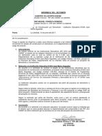 Informe 001 Demolicion Junio