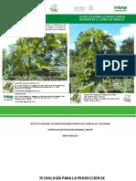 TECNOLOGIA PARA LA PRODUCCION DE JATROPHA.pdf