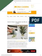 Huerto Urbano_ Cómo Plantar Una Piña Sin Semillas - Recetas de Cocina Casera - Recetas Fáciles y Sencillas