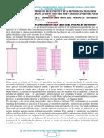 1. SEPARATA N_ 14 DISTRIBUCIÓN DEL ESFUERZO Y DEFORMA.docx