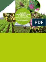 Control de Plagas en Quinua