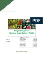 Trabajo Socio Critica Unidad IV Proyecto Agrario incluye el proyecto