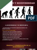 Evolución y Biodiversidad