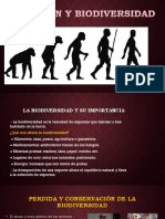 Evolución-y-biodiversidad.pptx