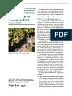 El riego por goteo - Universidad de Oregeon.pdf