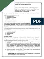 Histología Aparato Respiratorio