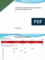 Auditoria Basica de Empresa Contratista y Bsc