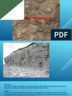 petrosedi-003.pptx