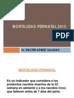 4044 Mortalidad Perinatal 2015