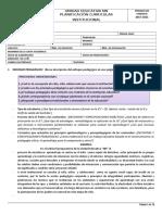 Formato de Planificacion Curricular Institucional (Pci) Ejemplo