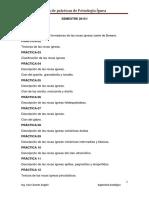 Guia de Práctica Petroignea