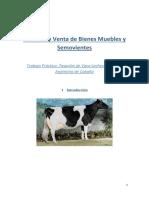 98094294 Tasacion de Vaca de CAbana Holando Argentino