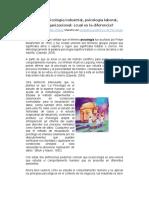 Psicologia Organizacional y Laboral