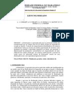 Leito Fluidizado - Relatório (1)