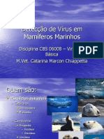 Viroses de Animais Marinhos