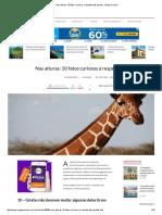 10 Fatos Curiosos a Respeito Das Girafas