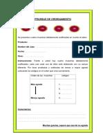 Formato de Pruebas de Ordenamiento