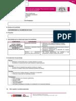 Mod4_Plantilla_propuesta_PPP1_RAMIREZ GONZALES_Jose Luis.docx