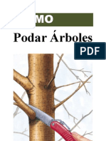 Como Podar Arboles