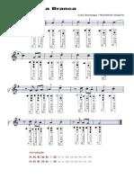 Asa Branca e Letra Com Notas Na Flauta