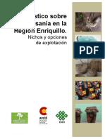 Diagnostico Sobre La Artesania en La Region Enriquillo (1)