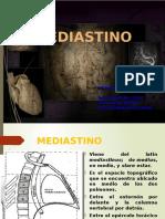 Mediastino Expo