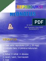 neonatus