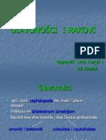 GLAVONO©CI  I RAKOVI
