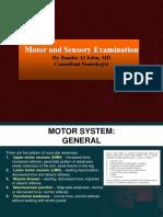 Motor Examination
