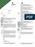 Directiva Formu Liqui Proyecto