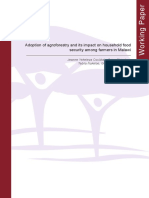 Agroforestry and Food Security in Malawi