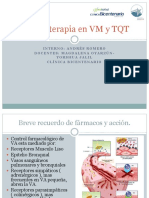 Aerosolterapia en VM y TQT