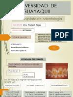 DIAPOSITIVAS-INTERNADOpatologias
